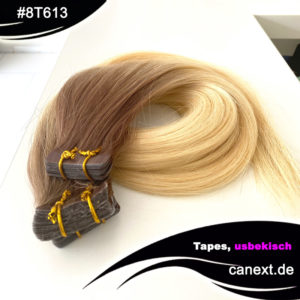 8T613 Hellblond und Hellbraun Ombre Tape Extensions